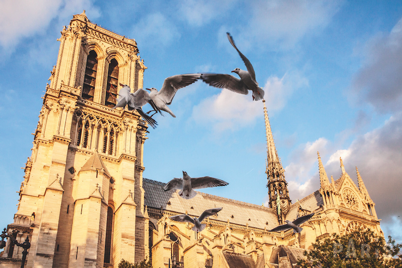Notre Dame used to be a must during 24 hours in PARIS