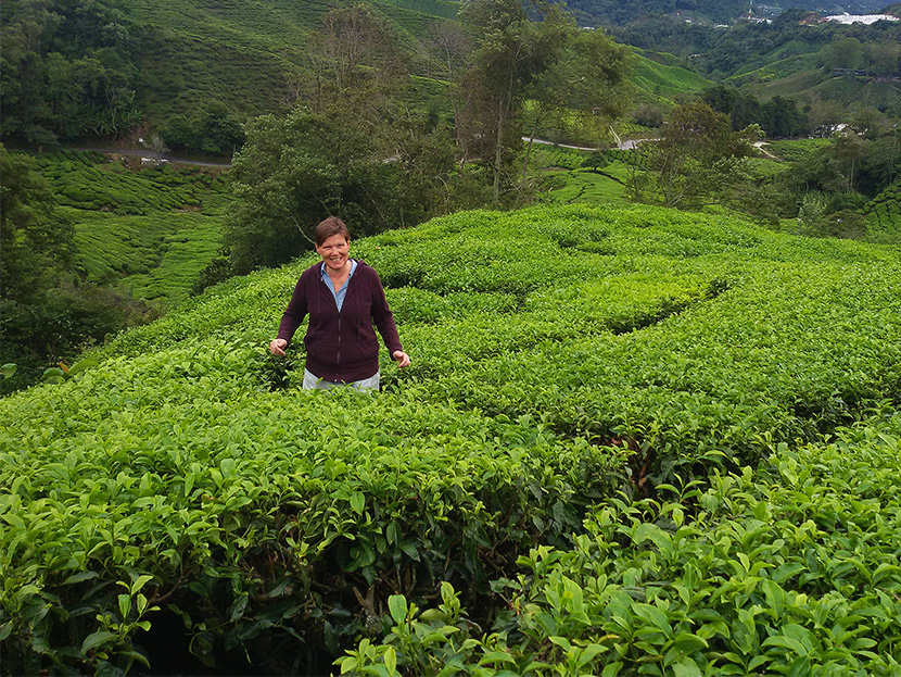 Renata Green standing amidst a Tea Plantation in the Cameron Highlands, Malaysia's Fruit Bowl