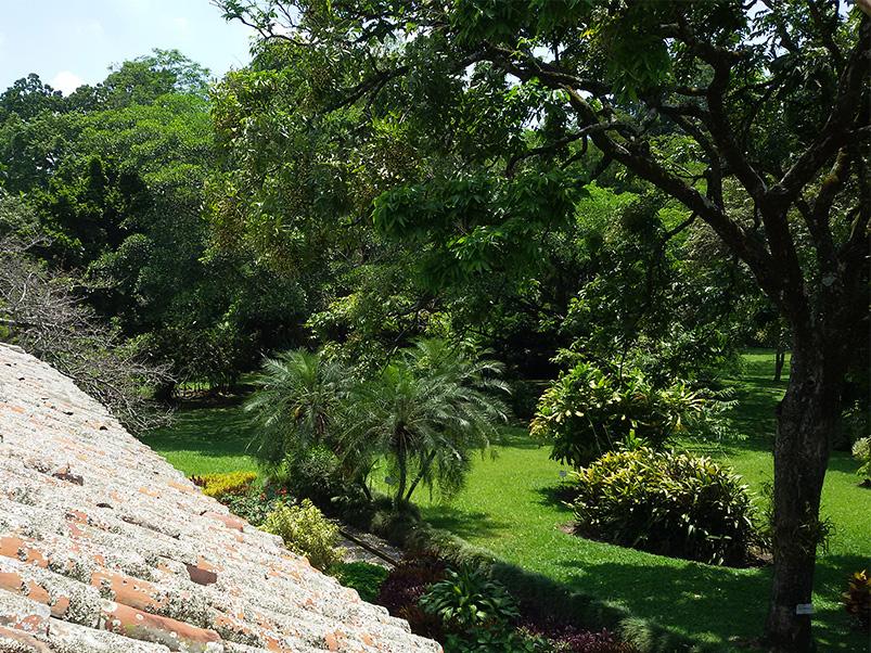 Lush gardens at Pidechinche,