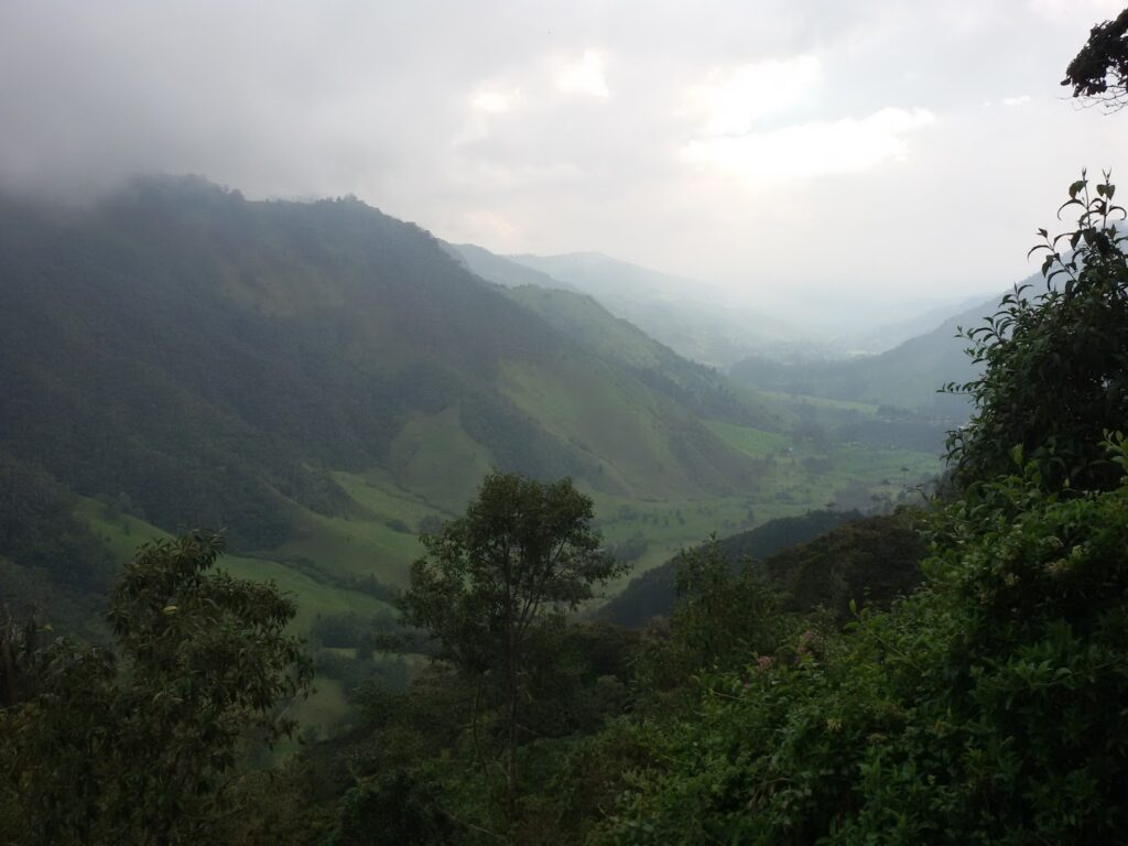 Valle de Cocora around Salento Colombia's Coffee Region