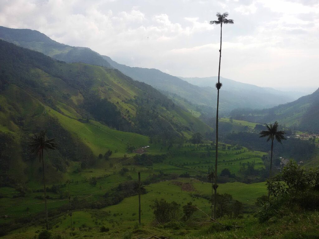 Hiking in Salento, Colombia's sumptuous coffee region.