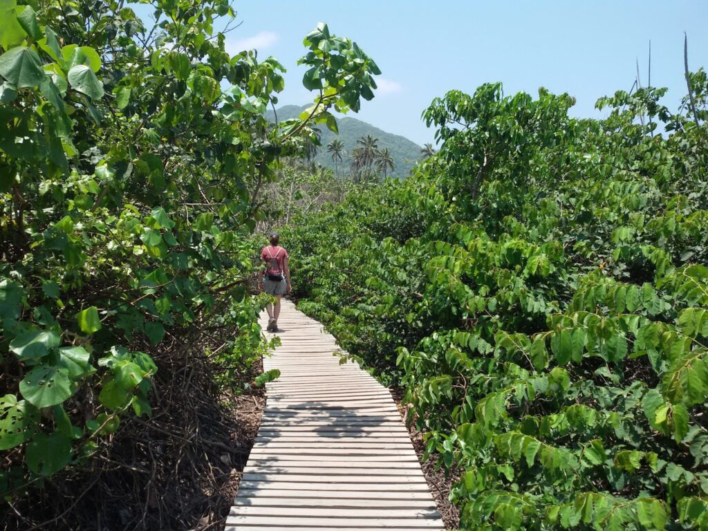 Woman walking on a wooden walkway at the Parque Tayrona.