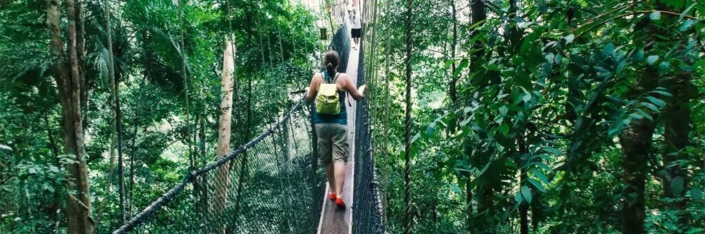 Taman Negara in Malaysia