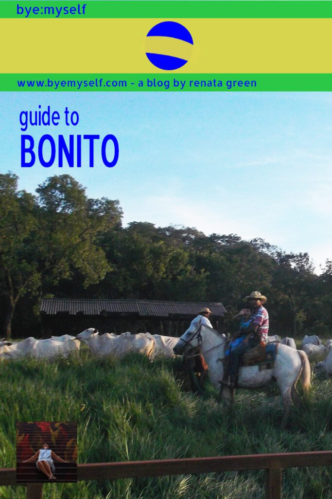 Pinnable Picture for the Post Guide to BONITO - where nomen est omen, definitely