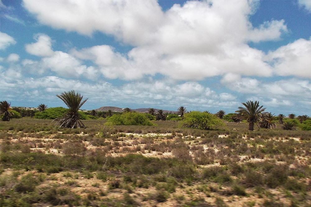 Via Pitoresca on Boa Vista, the world's most attractive heap of sand
