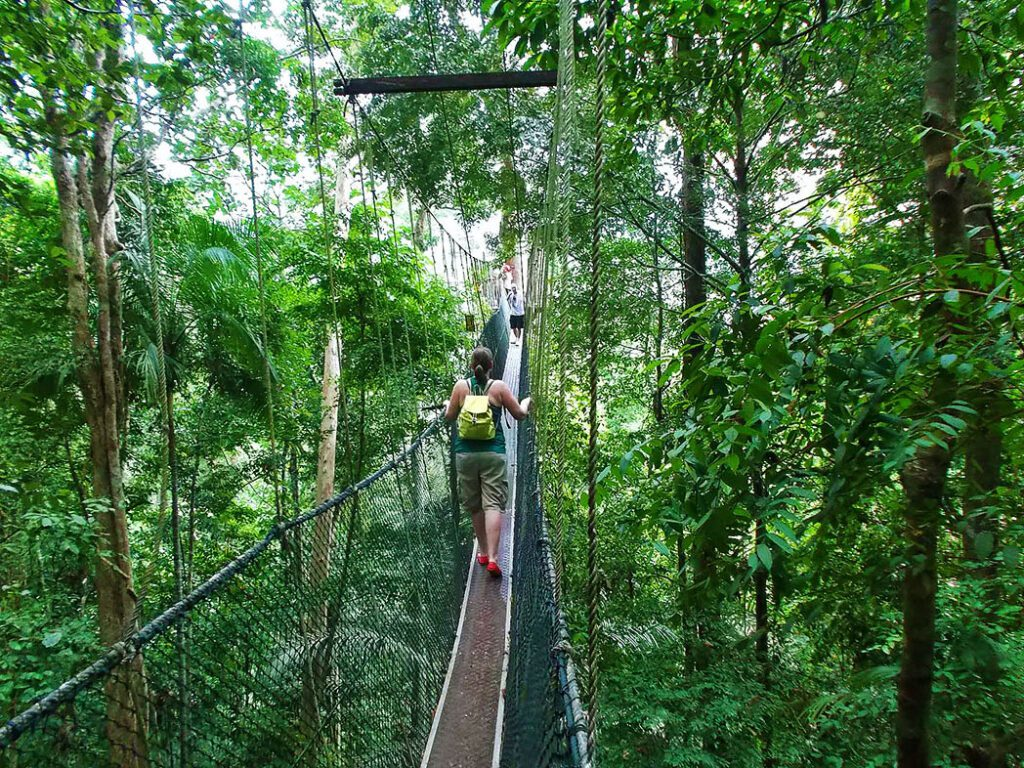 bye:myself - Renata Green - byemyselftravels: Guide to the Taman Negara Malaysia