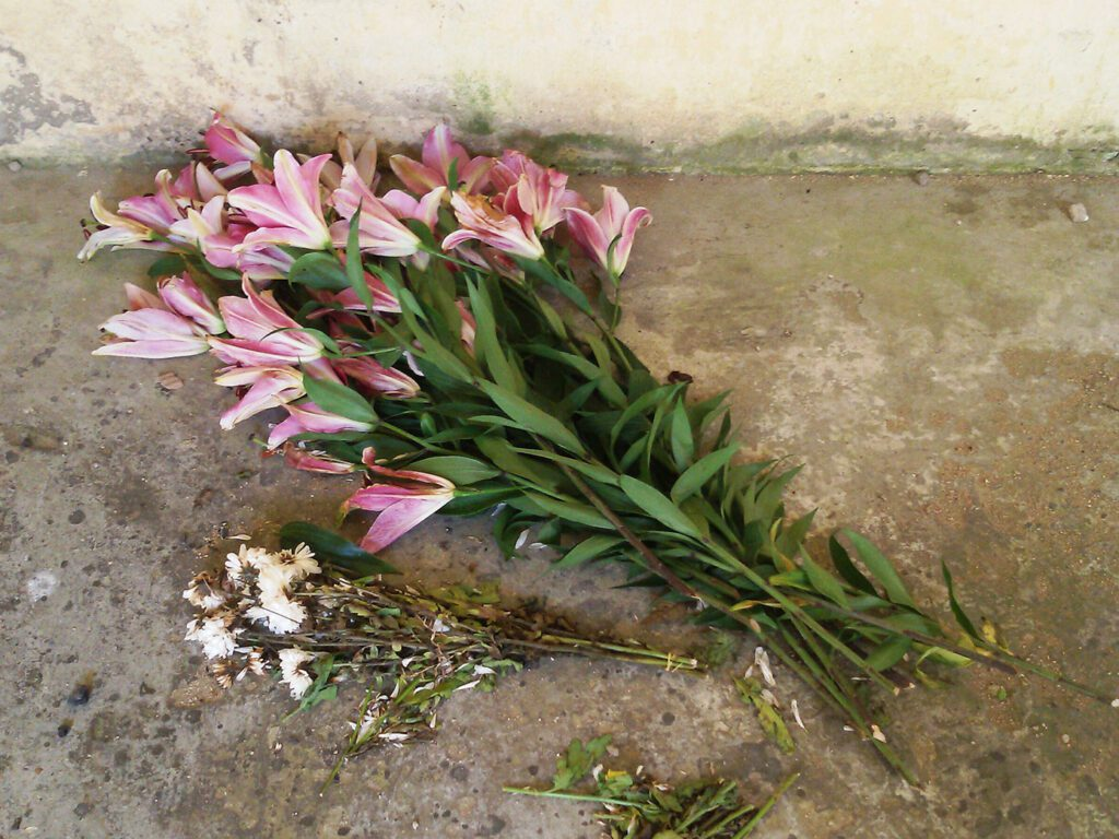 Flowers at the old Catholic church on Thansur Bokor