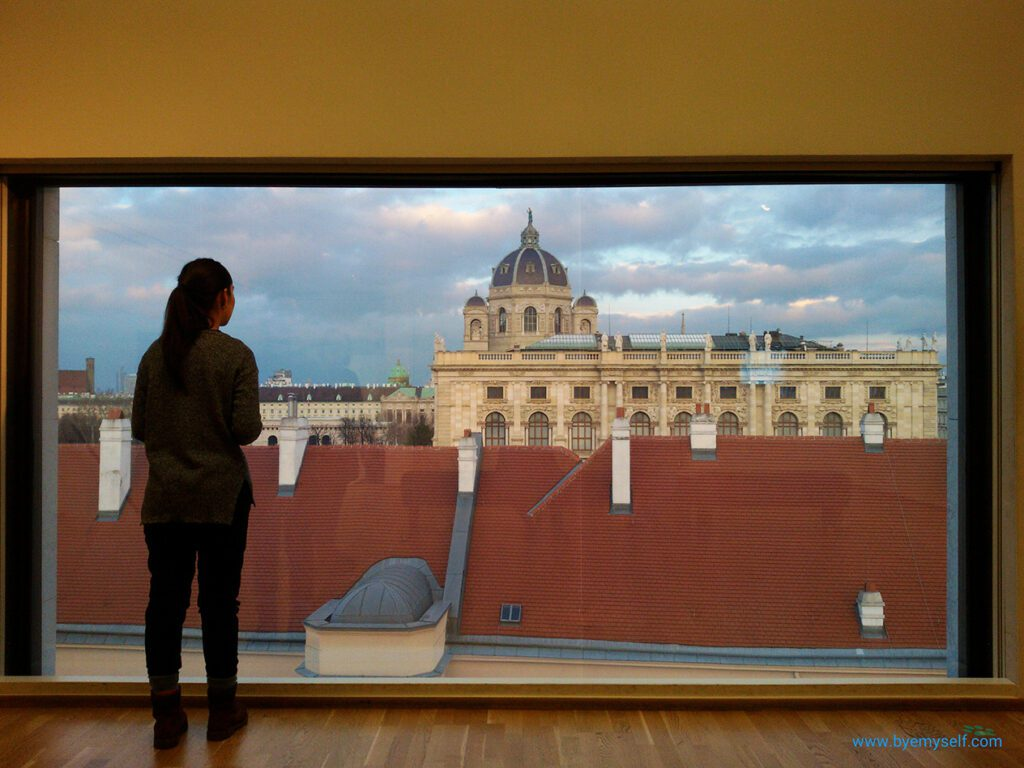 View from the Museum Leopold