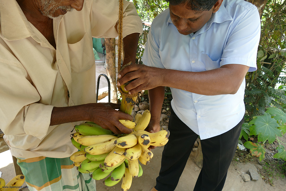 Men selling bananas