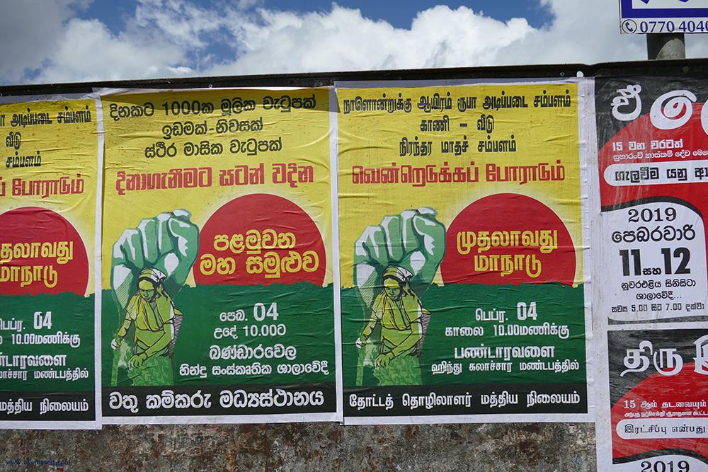 bye:myself - Renata Green - byemyselftravels: Nuwara Eliya Sri Lanka