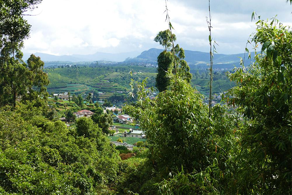 View of Nuwara Eliya