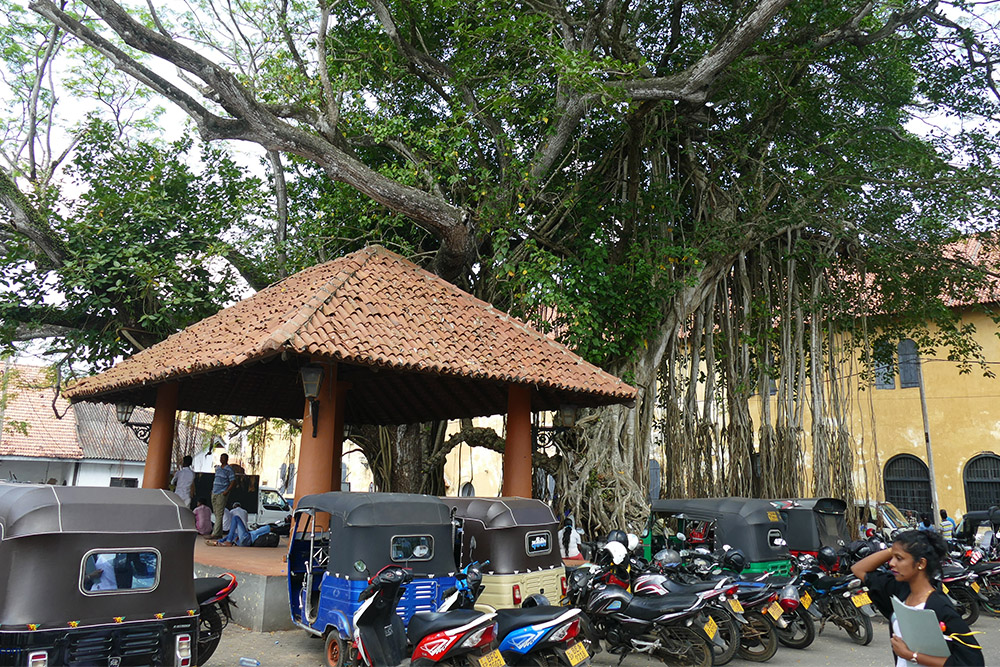 The Old Ambalama in Galle Fort Sri Lanka