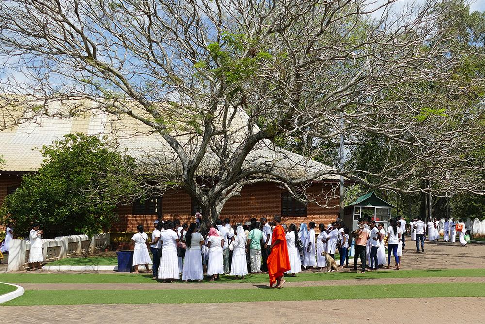 bye:myself - Renata Green - byemyselftravels: Anuradhapura Mihintale Sri Lanka