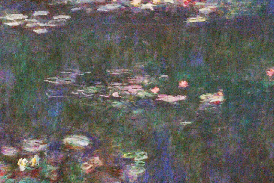 Monet's Nymphaeas should be seen during 24 hours in PARIS