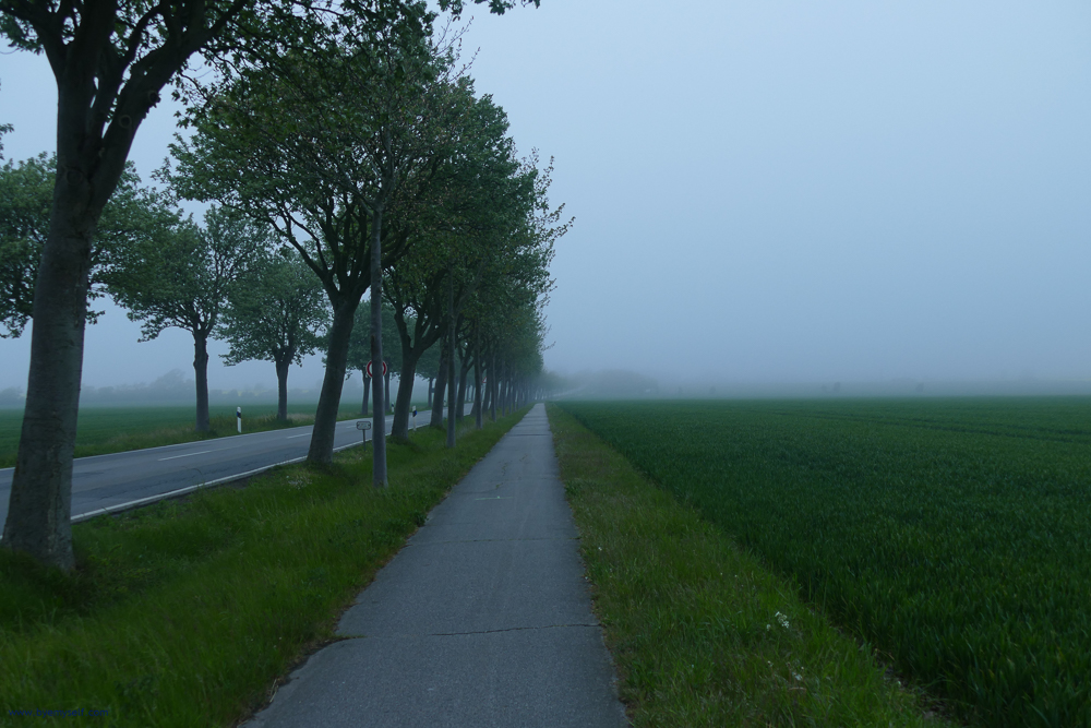 Hazy road from Burg to Puttgarden